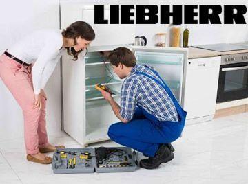 servicio tecnico reparación electrodomésticos liebherr santa cruz tenerife