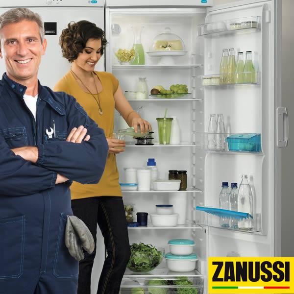 reparación vinotecas y congeladores Zanussi en Tenerife